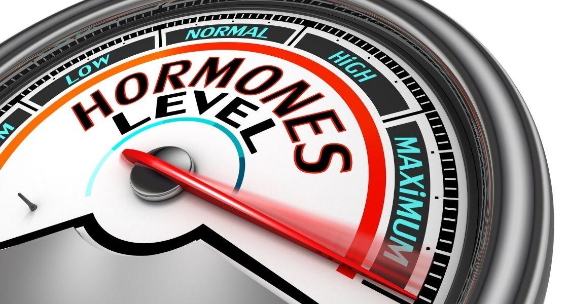 modul hormone
